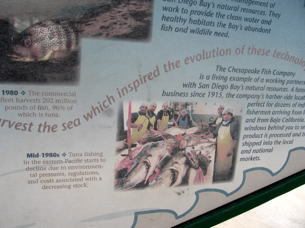Sign contrasts abundant catch of 1980 with the decline of tuna fishing in mid 80's.