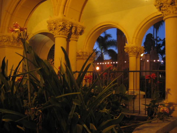 Balboa Park after dark transforms into a fantastic, fairytale world.