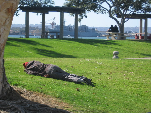 Person lies face down on grass in San Diego's Embarcadero Marina Park North.