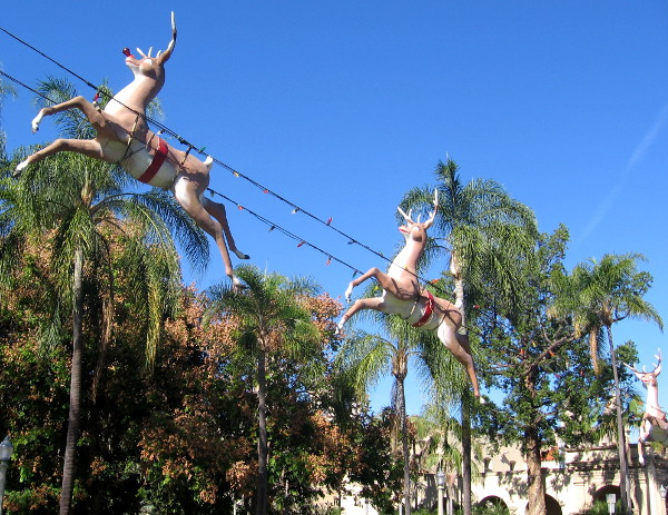 The flying reindeer take once more to the blue San Diego sky!