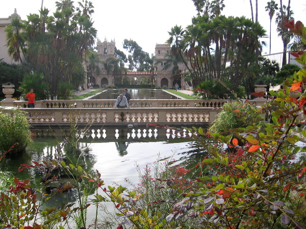 View of the entire reflecting pool from the Botanical Building.