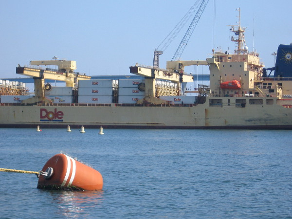 Huge Dole cargo ship brings in millions of bananas from Central America.