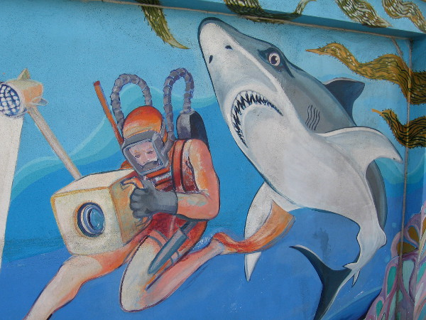 A scuba diver seems unaware a large hungry shark looms just behind!