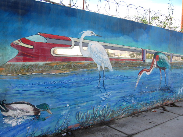 A train with silvery windows passes through scene of lagoon with water birds.