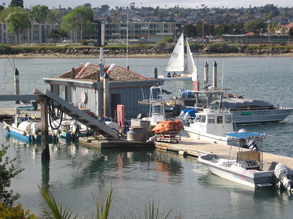 The Harbor Island Fuel Dock is always a hub of boating activity.