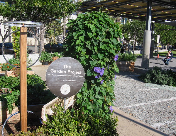 Small garden plot beside children's play area contains flowers and a few edible plants.