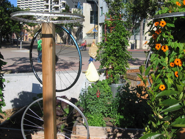 Bicycle wheels and a couple scarecrows add to the fun in the Garden Project.