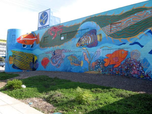 This north-facing wall contains lots of bright aquatic life!