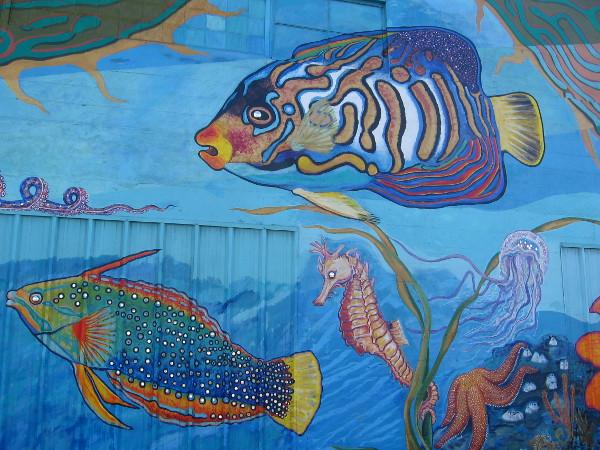 Beautifully painted fish, a seahorse, jellyfish and starfish.