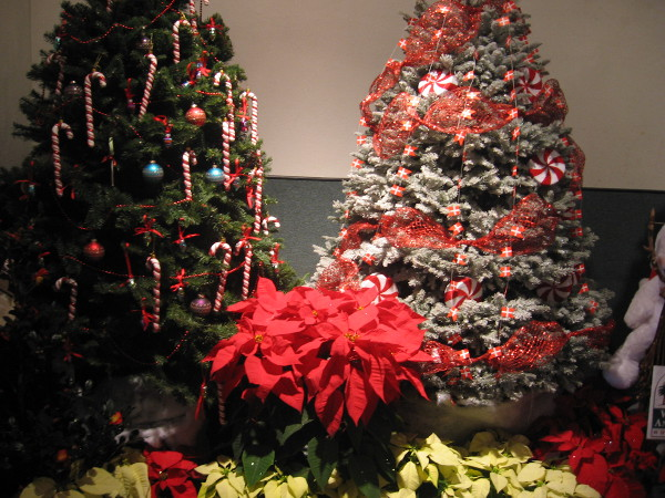 San Diego Floral Association hosted many Christmas trees created by local folk.