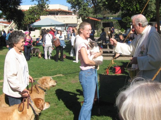 Animals lined up for blessings included dogs, cats and rabbits.
