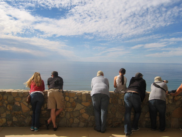 People gaze out at the beautiful sky and ocean from a popular whale-watching point.