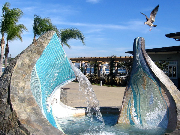 Seagulls like getting a drink of sparkling water from top of colorful fountain!