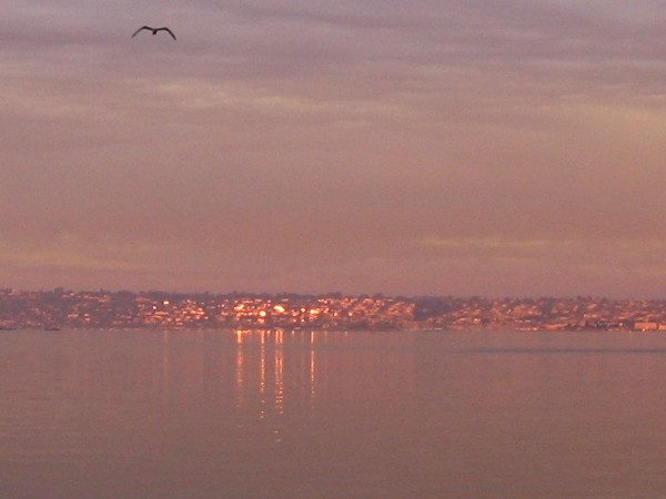 Morning light is reflected jewel-like from Point Loma's windows across the bay.
