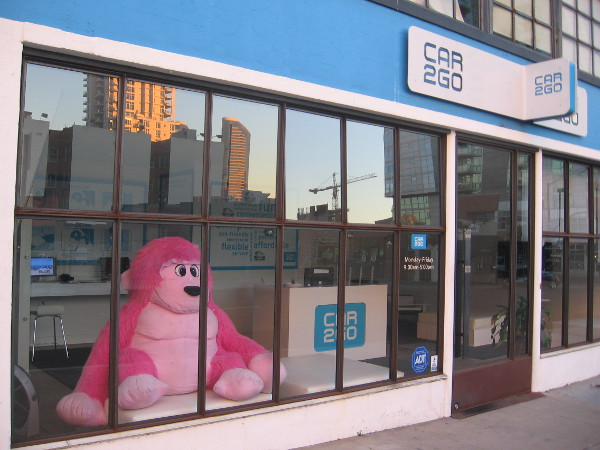 Big fuzzy pink gorilla in the Car2Go window.