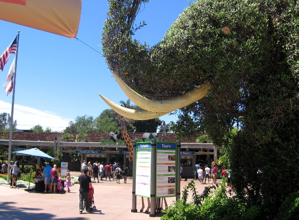 Artfully trimmed shrub elephant in front of San Diego Zoo.
