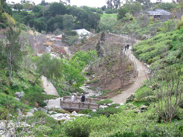 View of the Japanese Friendship Garden expansion in Balboa Park canyon.