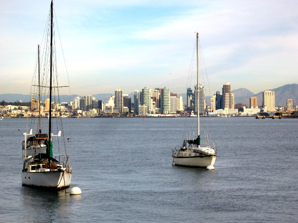 Sailboats moored near Shelter Island, downtown San Diego skyline in the background.
