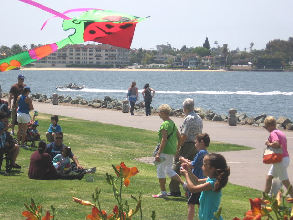 A kite is flying above the grassy park near Seaport Village. Another typical day.