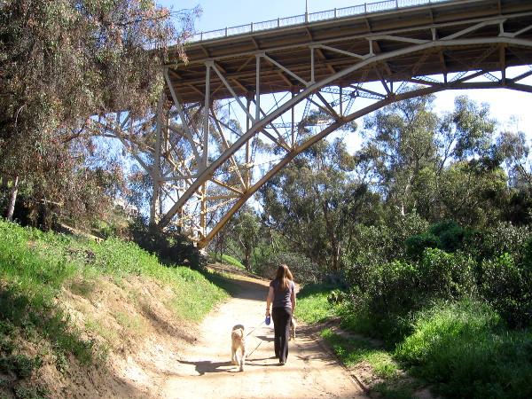 This elegant old steel bridge has very limited traffic.