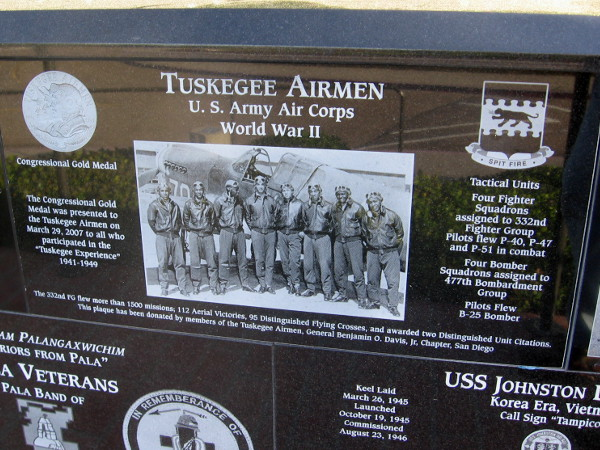 The brave, meritorious Tuskegee Airmen of the U.S. Army Air Corps during World War II.