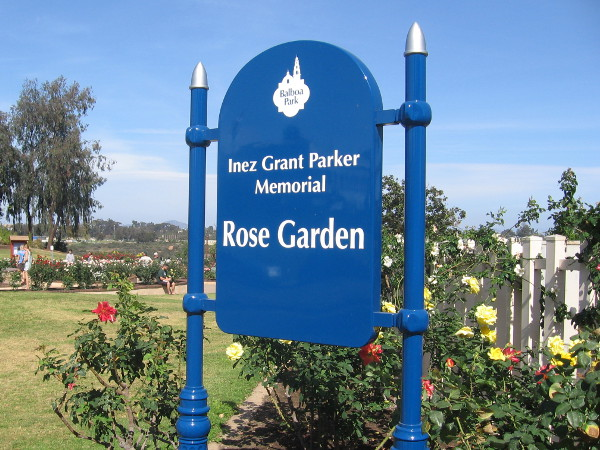 The Inez Grant Parker Memorial Rose Garden contains hundreds of blooms of bright color!