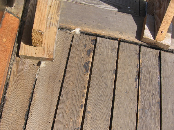 This deck will be re-caulked this week using cotton, hemp rope and synthetic tar. Earlier caulking with less modern materials was unsuccessful, if I recall correctly.
