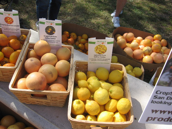 Help save nutritious oranges, lemons, limes, avocados, tangerines...you name it!