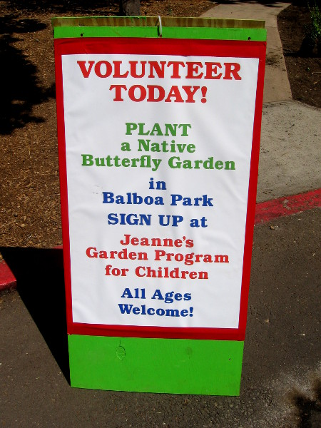 Volunteer today! Plant a butterfly garden in Balboa Park!
