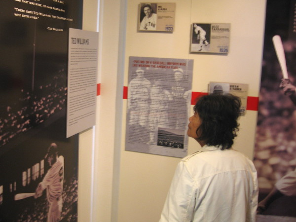 Museum visitor reads display about Ted Williams, American baseball legend who grew up in San Diego. He had Welsh, Irish, Mexican, Basque, Russian and Native American roots!