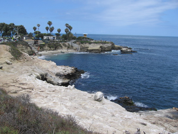 A gorgeous view of La Jolla Cove on a perfect spring day.