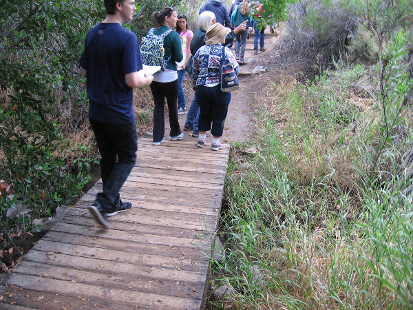 We cross a small wooden footbridge and take in nature's sights and smells on a beautiful day.
