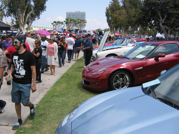People at the annual Plastic Fantastic check out cars of the North County Corvette Club.