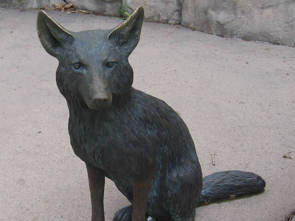 Sculpture of a coyote, one the top predators of Mission Trails Regional Park. Even with human encroachment, they remain numerous today.