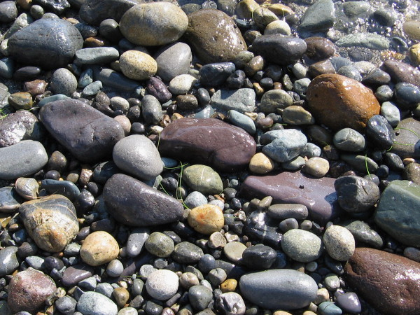 These stones were made smooth and rounded by that great Earth-encompassing rock tumbler, the mighty ocean!