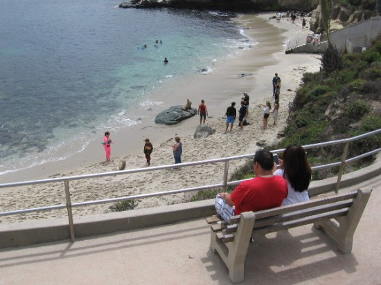 Some benches allow people to enjoy the view. Scuba divers in the cove swim with the sea life.