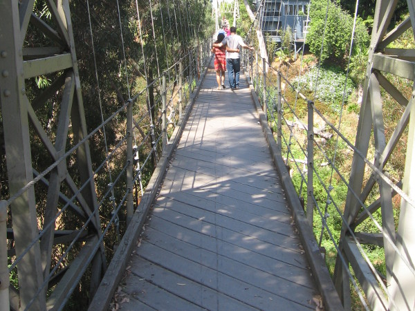 Couple crosses Kate Sessions Canyon on a cool 375 foot long suspension bridge!