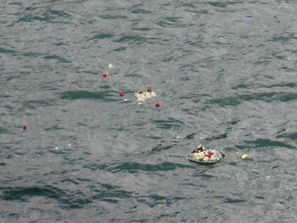 Flowers and memories float on San Diego Bay on this beautiful Memorial Day weekend.
