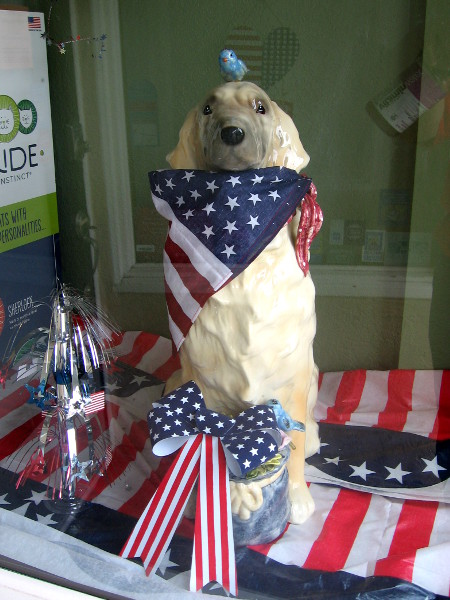 A shop window had a dog with a red, white and blue bow!
