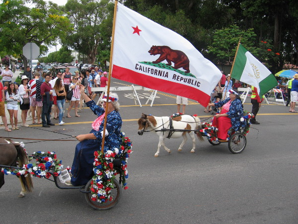 Red, white and blue flowery carts are pulled by miniature horses!