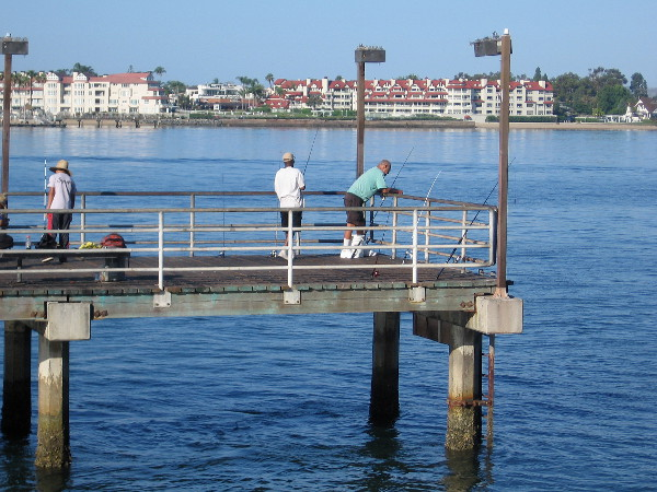 Fishing friendship and life on a downtown pier cool for Fishing license san diego