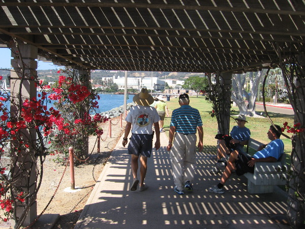 Bougainvillea and lath provide shade on a sunny warm summer morning. Several of these structures are found along the park