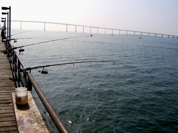 Fishing poles in a line on a hazy day. Across the gentle water to the south stretches the San Diego–Coronado Bridge.