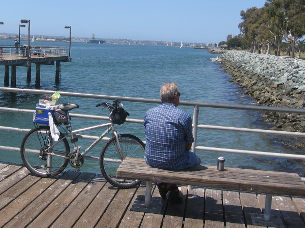 Joggers, bicyclists, skaters, picnickers, tourists, people attending Summer Pops concerts nearby...almost everyone likes to visit this pier for great peaceful views.