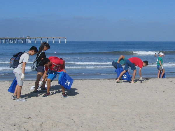 Volunteers remove litter from beautiful Ocean Beach during Coastal Cleanup Day.
