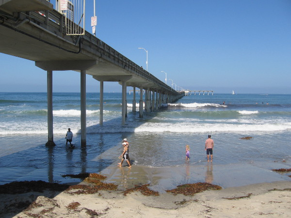 The beach near the foot of the OB pier is a favorite place in San Diego for tourists and locals alike.