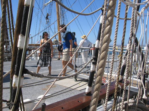 Festival of Sail visitors check out many cool sights! I see someone climbing the Irving Johnson's shrouds!