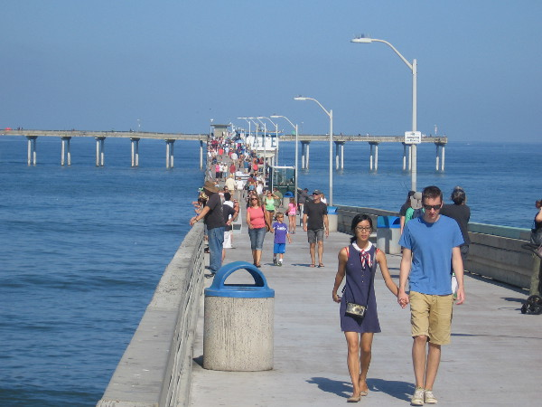 Catch cool waves and big fish at ocean beach pier cool for San diego pier fishing