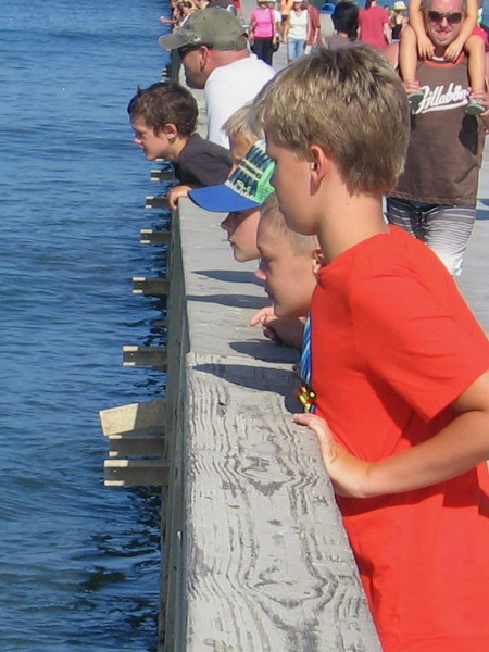 Kids gaze over the rail at surfers directly below. The action is amazing today!