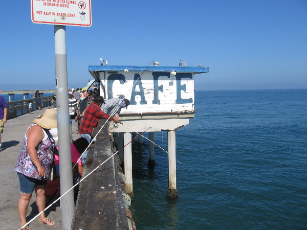 While surfers catch cool waves, people farther down the OB pier try to catch some big fish!